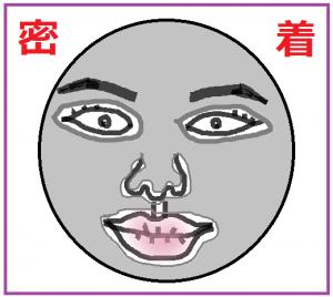 顔 フェイスマスク