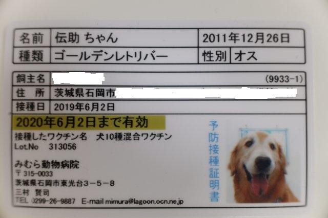 みむら動物病院 002
