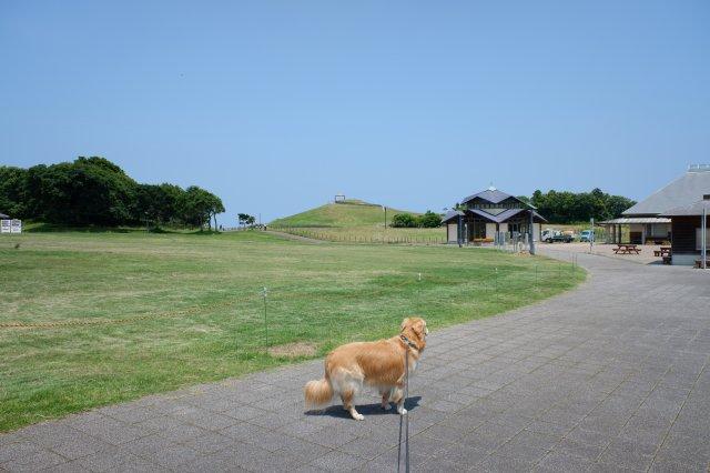 鹿島灘海浜公園 2019.6.26 001