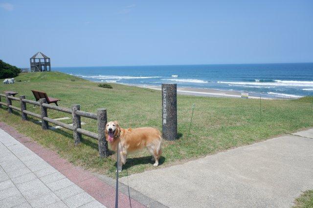 鹿島灘海浜公園 2019.6.26 018
