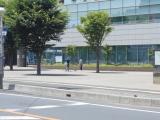 1-DSCN2696.jpg