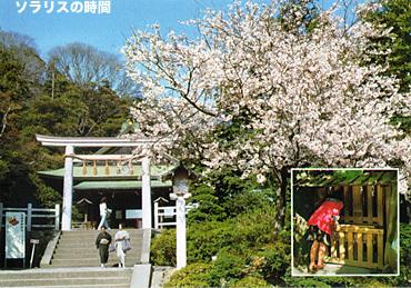 987-96昭和観光地絵葉書5