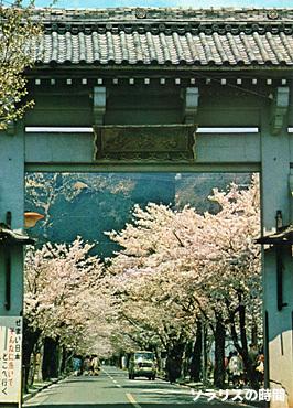 987-96昭和観光地絵葉書10