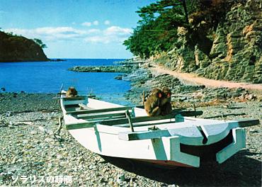 987-96昭和観光地絵葉書9