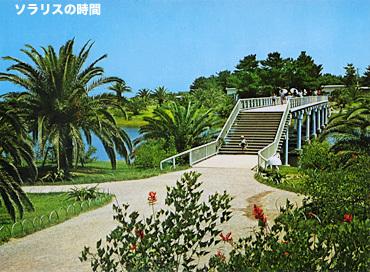 987-95昭和観光地絵葉書3