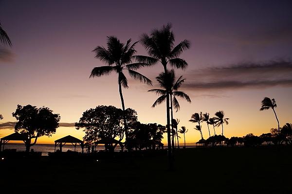 2019年6月ハワイ0