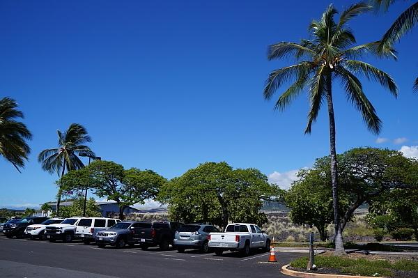 2019年6月ハワイ9