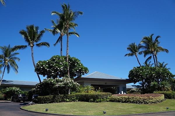 2019年6月ハワイ20