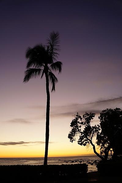 2019年6月ハワイ28