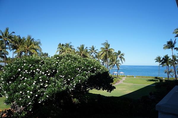 ハワイ島33