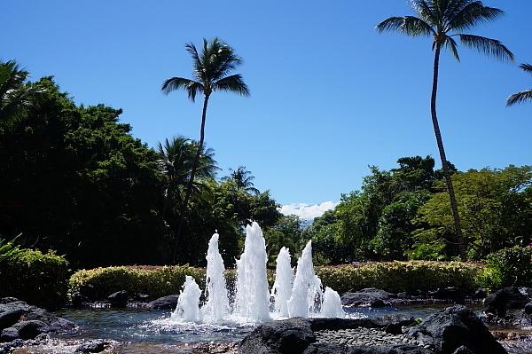 ハワイ島34