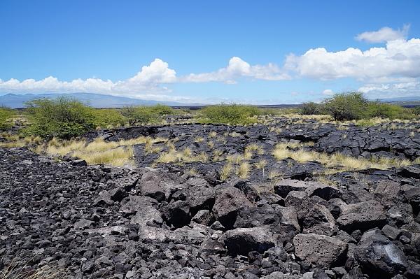 ハワイ島51