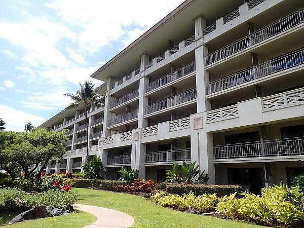 ハワイ島81