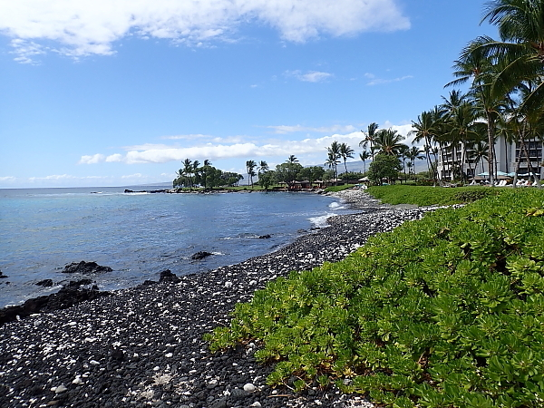 ハワイ島82