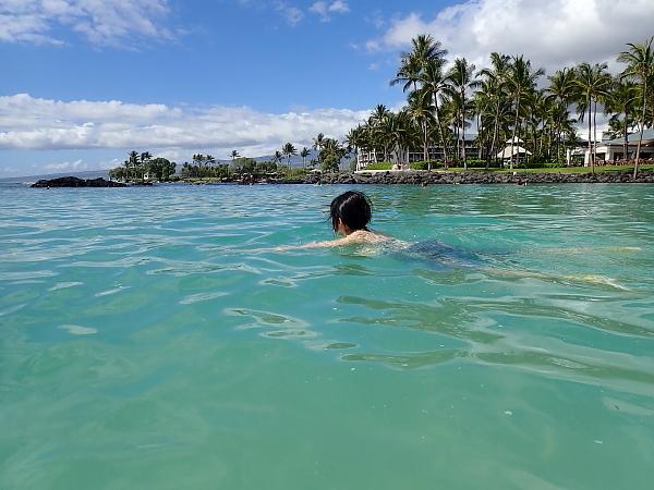 ハワイ島85