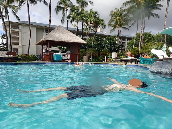 ハワイ島87