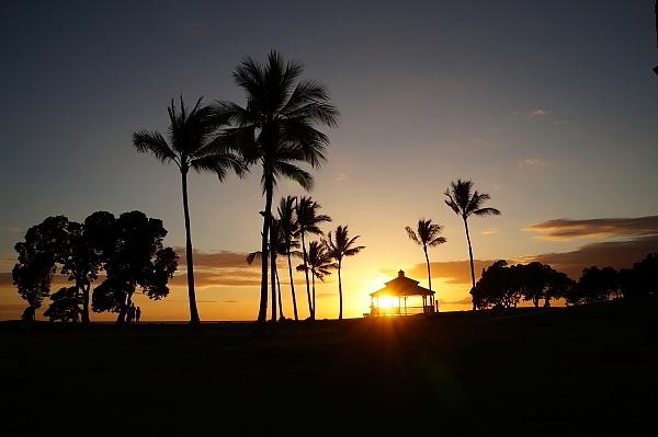 ハワイ島89