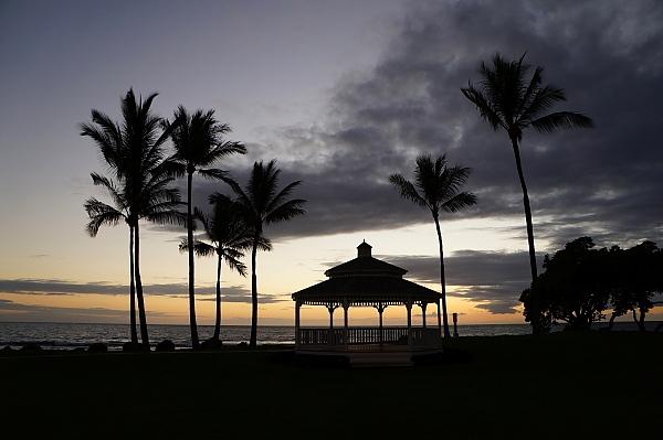 ハワイ島93