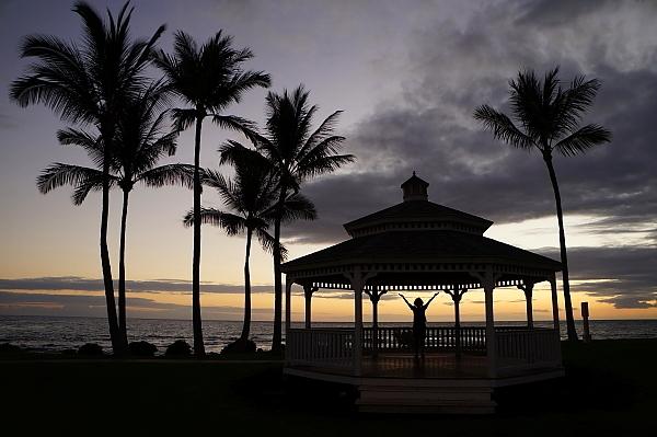 ハワイ島94