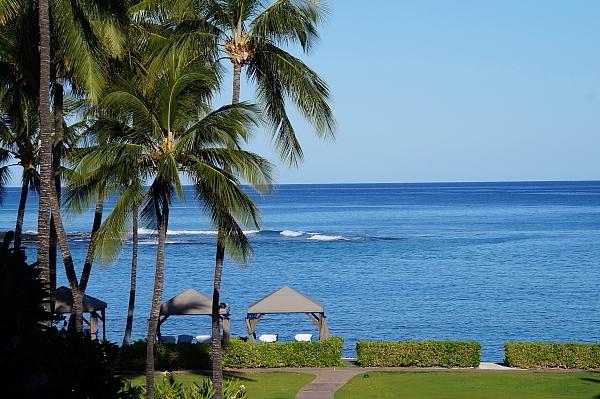 ハワイ島98