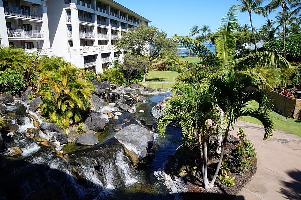ハワイ島102
