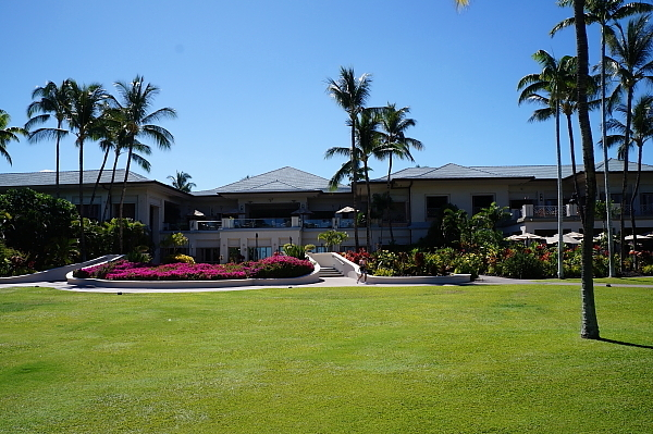 ハワイ島106