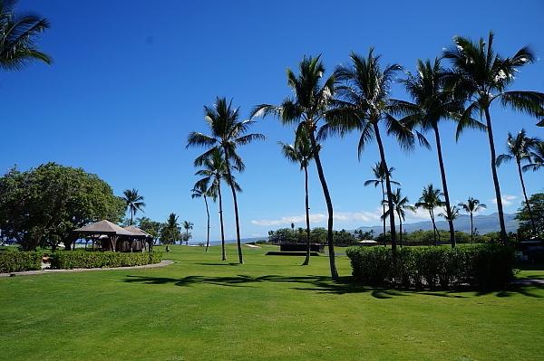 ハワイ島109