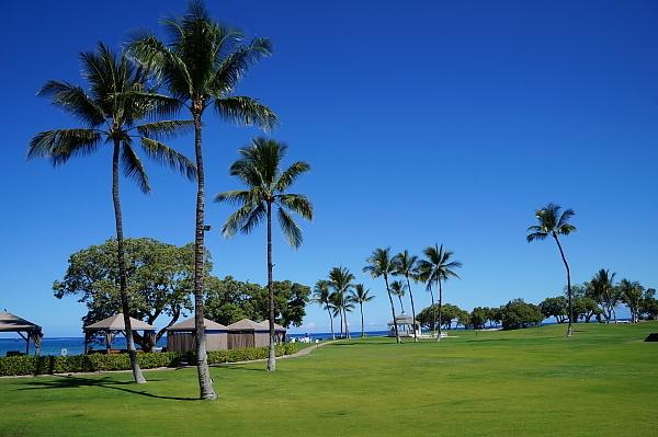 ハワイ島110