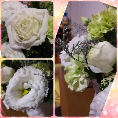 PhotoGrid_1566740469985.jpg
