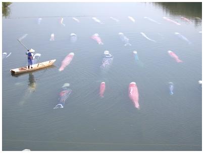 佐波川鯉のぼり14