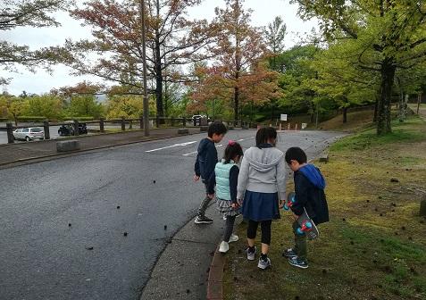 5 公園内の探検