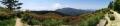 12 自然つつじ園 パノラマ 大