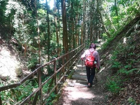19 櫛羅の滝コースを下る