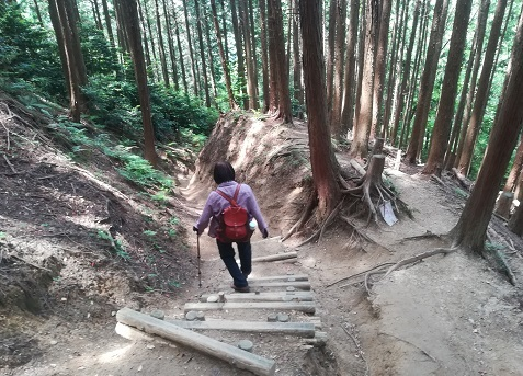 21 櫛羅の滝コースを下る