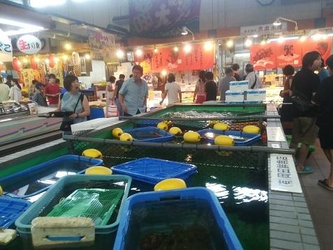 3 舞鶴海鮮市場 いけす