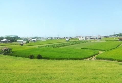 13 遠くは大阪湾
