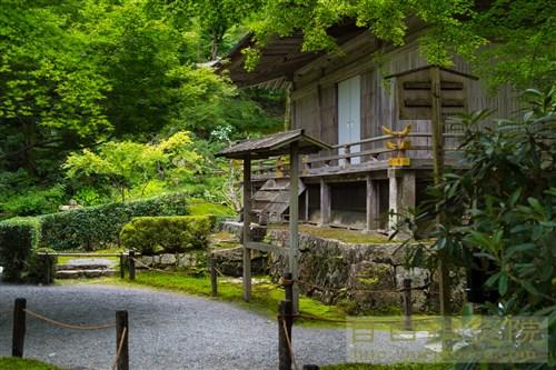 20190715京都苔巡り三千院2
