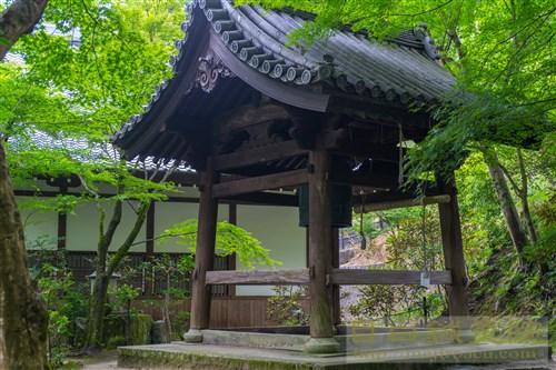 20190715京都圓光寺7