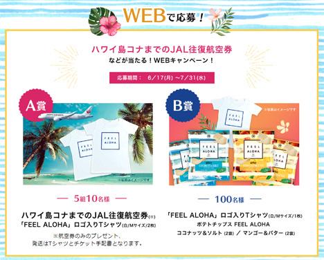 湖池屋は、コナ往復 JAL航空券などが当たるキャンペーンを開催!