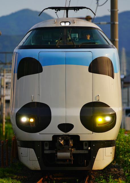 190804 JRW 287 panda kuroshio front1