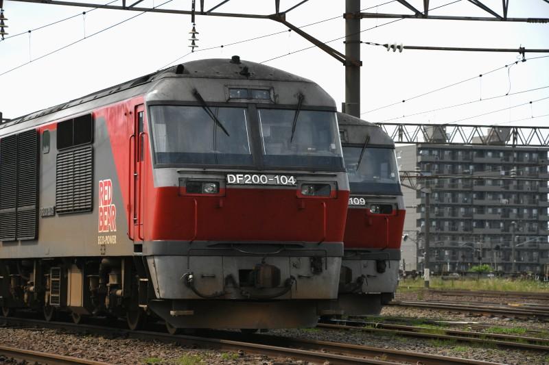 DF104DSC_2029-2.jpg