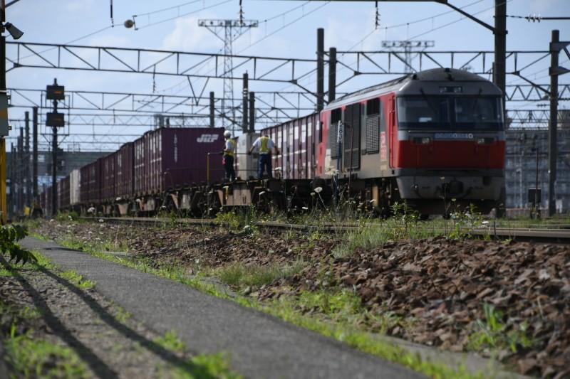 DF110DSC_2005-1.jpg