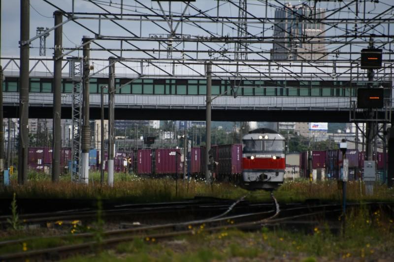 DF112DSC_0859-1.jpg