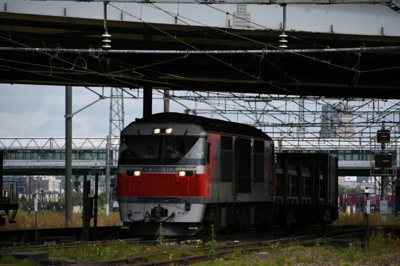DF112DSC_0867-1.jpg