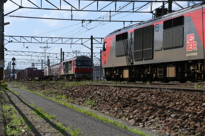 DF112DSC_2008-1.jpg