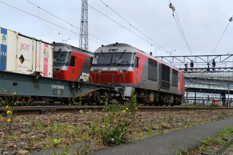 DF117DSC_0889-1.jpg