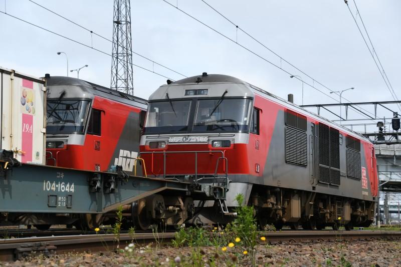 DF117DSC_0890-1.jpg