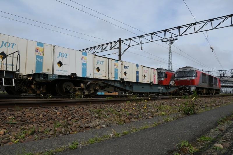 DF117DSC_0891-2.jpg