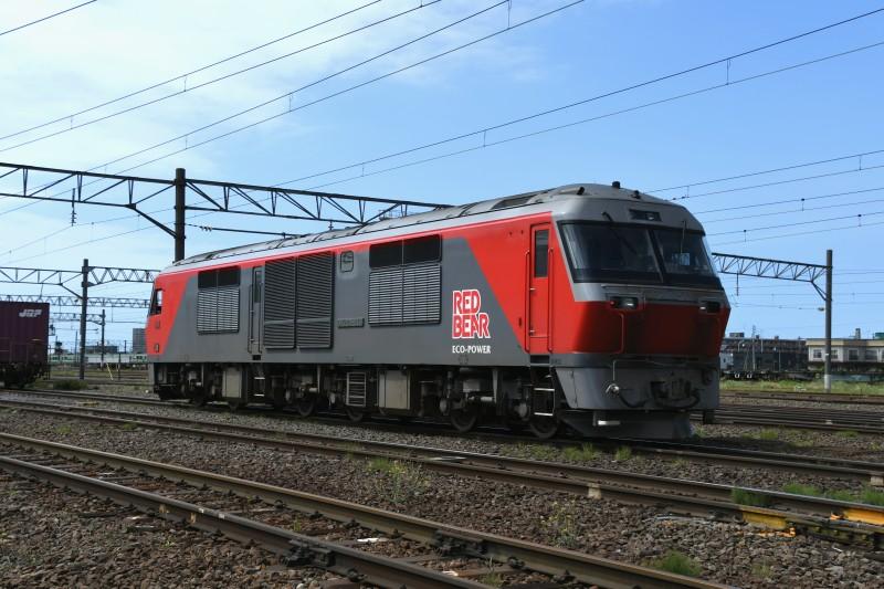 DF119DSC_0884-2.jpg