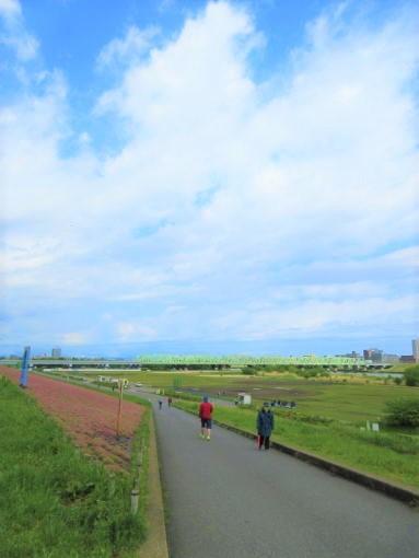 201  空荒川大橋(1)